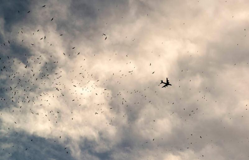 Mehr Sicherheit im Luftraum mit neuronalen Netzen