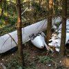 Pilot überlebt dank Fallschirm